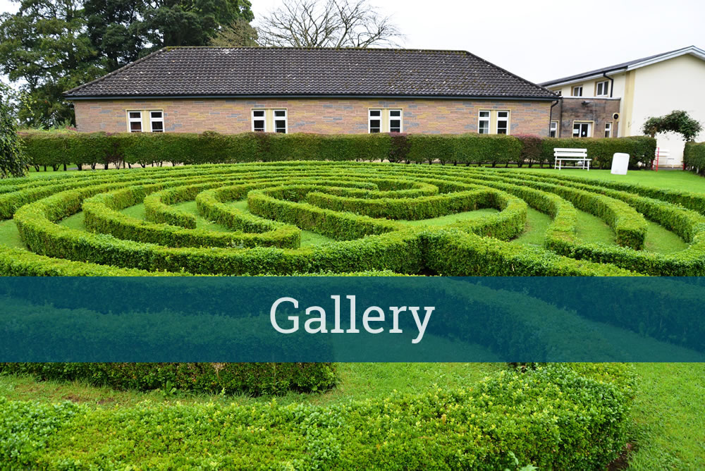 gallery-home